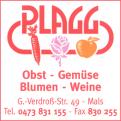Logo Plagg
